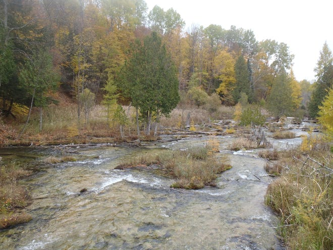 And along the Cedar River in Antrim County is up for auction.