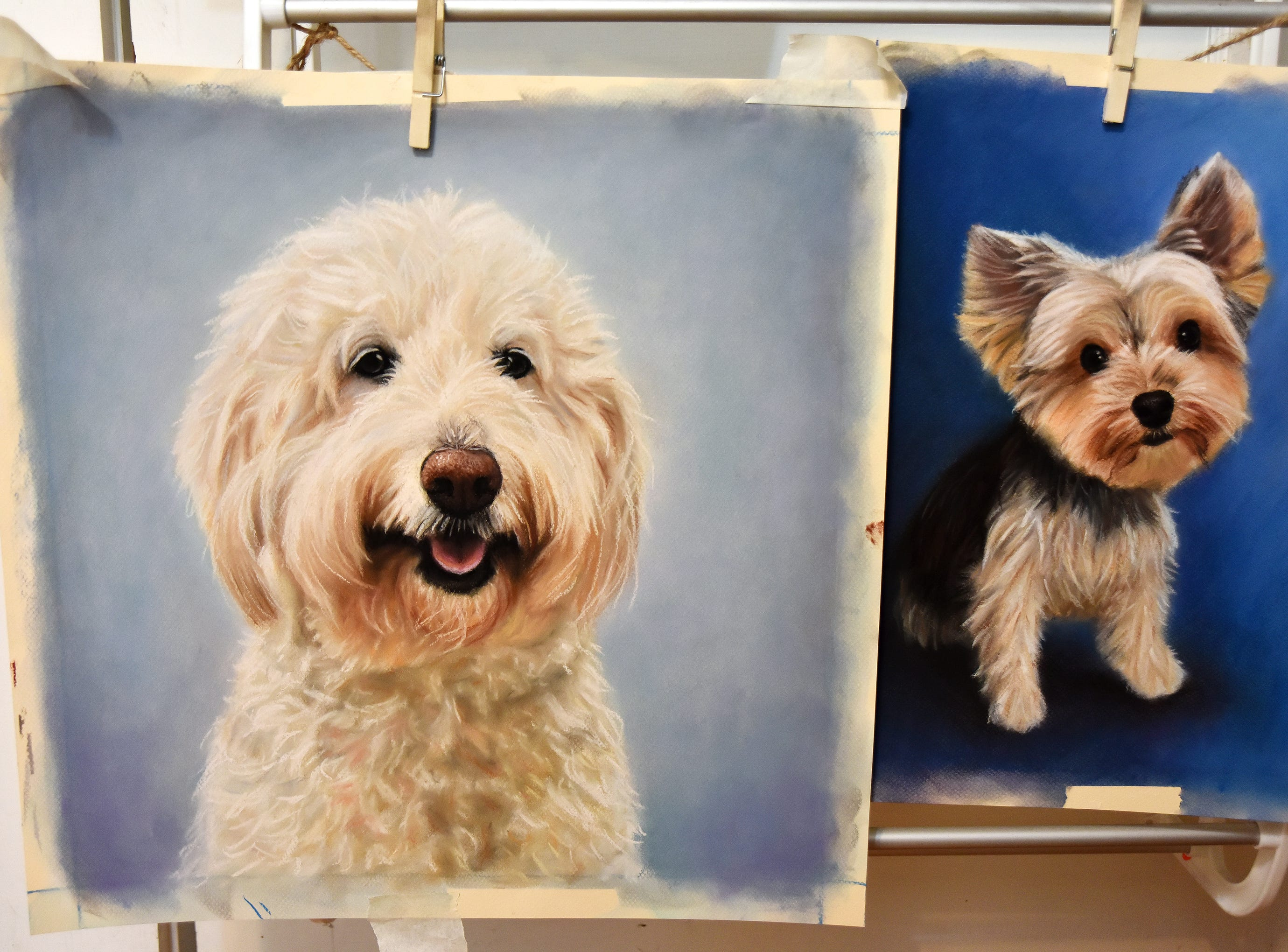 Finished pet portraits by Olivia White hang at her home studio in Anderson