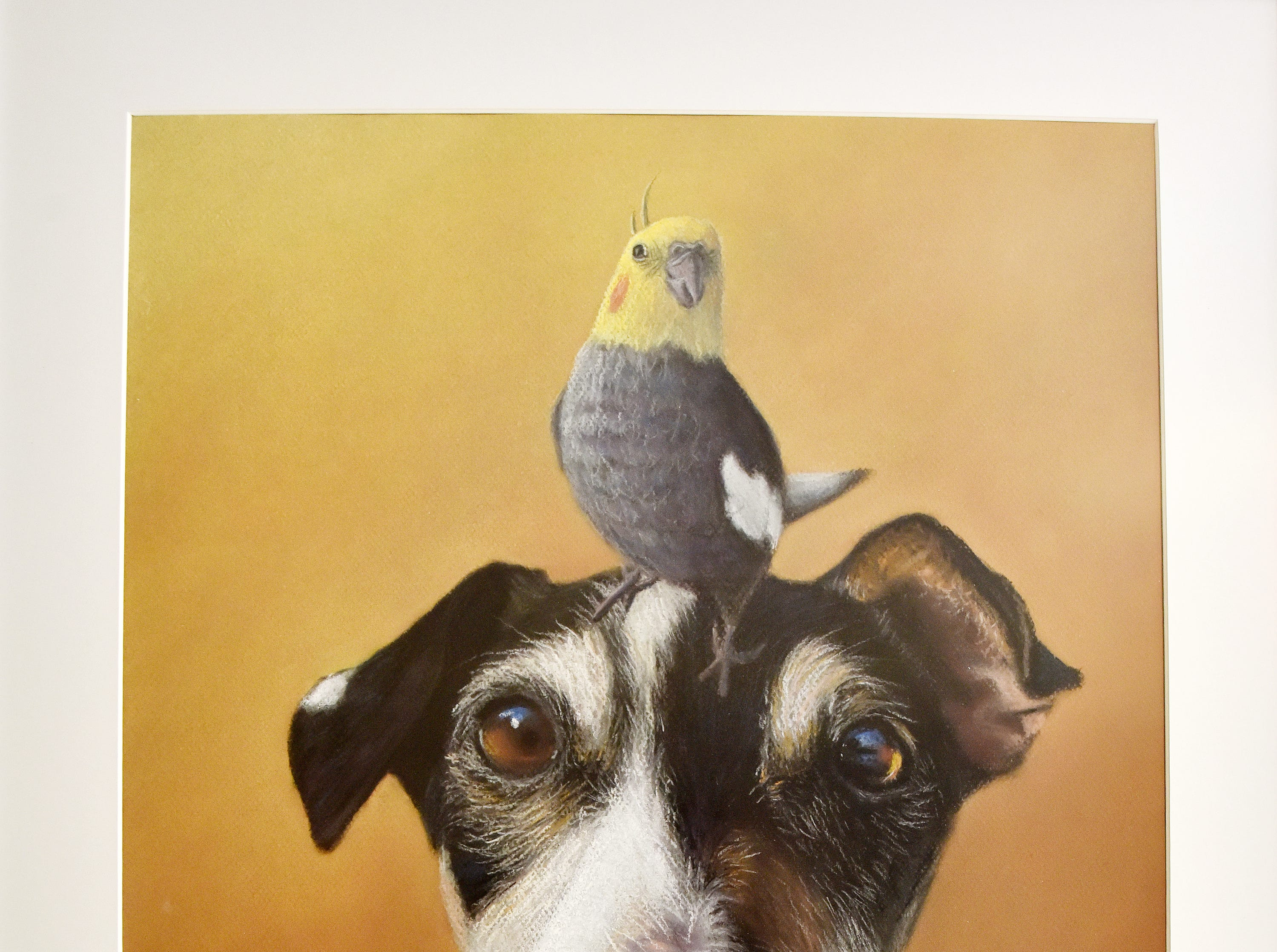 A pet portrait by artist Olivia White.