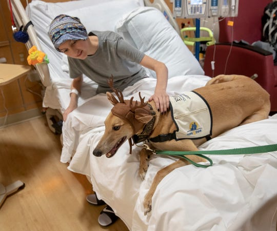 Brooklyn Schofield, 13, visits with therapy dog Phineas at Riley Hospital for Children on Dec. 3.