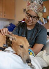 Megan Broviak, 12, visits with therapy dog Phineas, AKA Finn, at Riley Hospital for Children, Indianapolis, Monday, Dec. 3, 2018. Finn's guardian, Kathi Moore says that the greyhound sleeps as much as 23 hours a day, is mellow, and readily flops down on any bed or couch nearby.