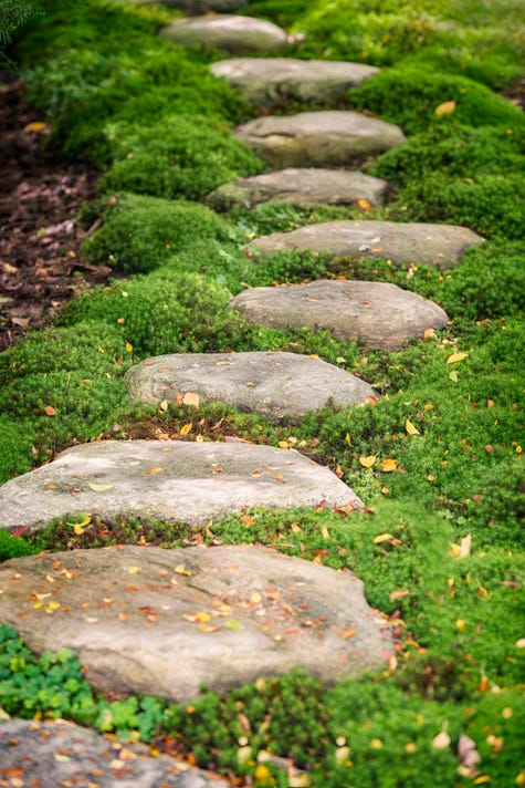 Garden Path Made Of Stones