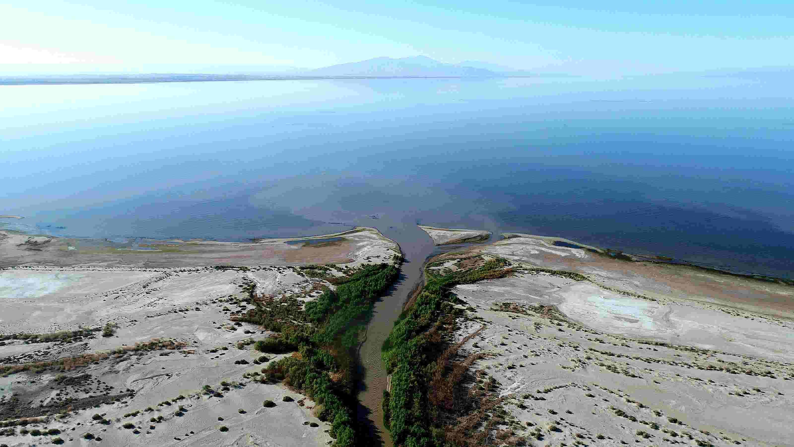 Imperial County declares Salton Sea emergency, demands California take action