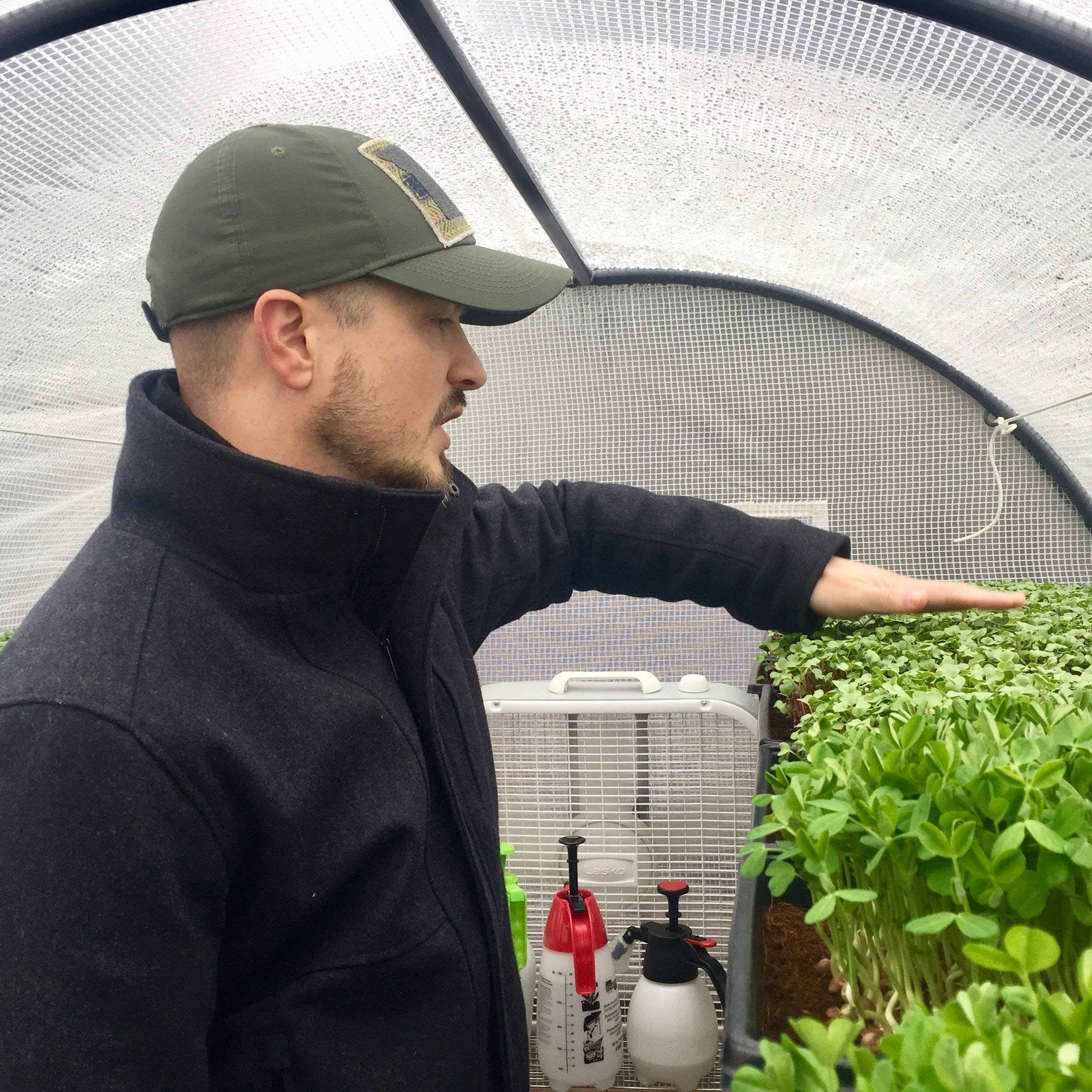 From Springfield to Korea and back — a man's journey to urban farming, microgreens