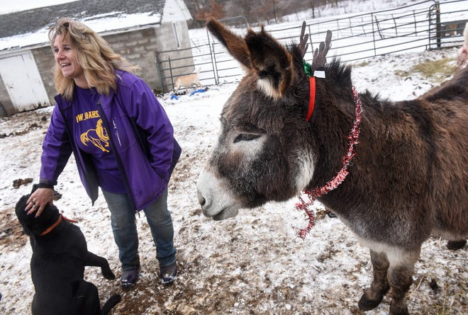 Joah's Ark owner Jo Olson talks about her love for animals Wednesday, Dec. 5, at her farm near St. Augusta.