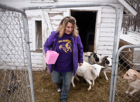 Joah's Ark owner Jo Olson visits some of her animals Wednesday, Dec. 5, at her farm near St. Augusta.