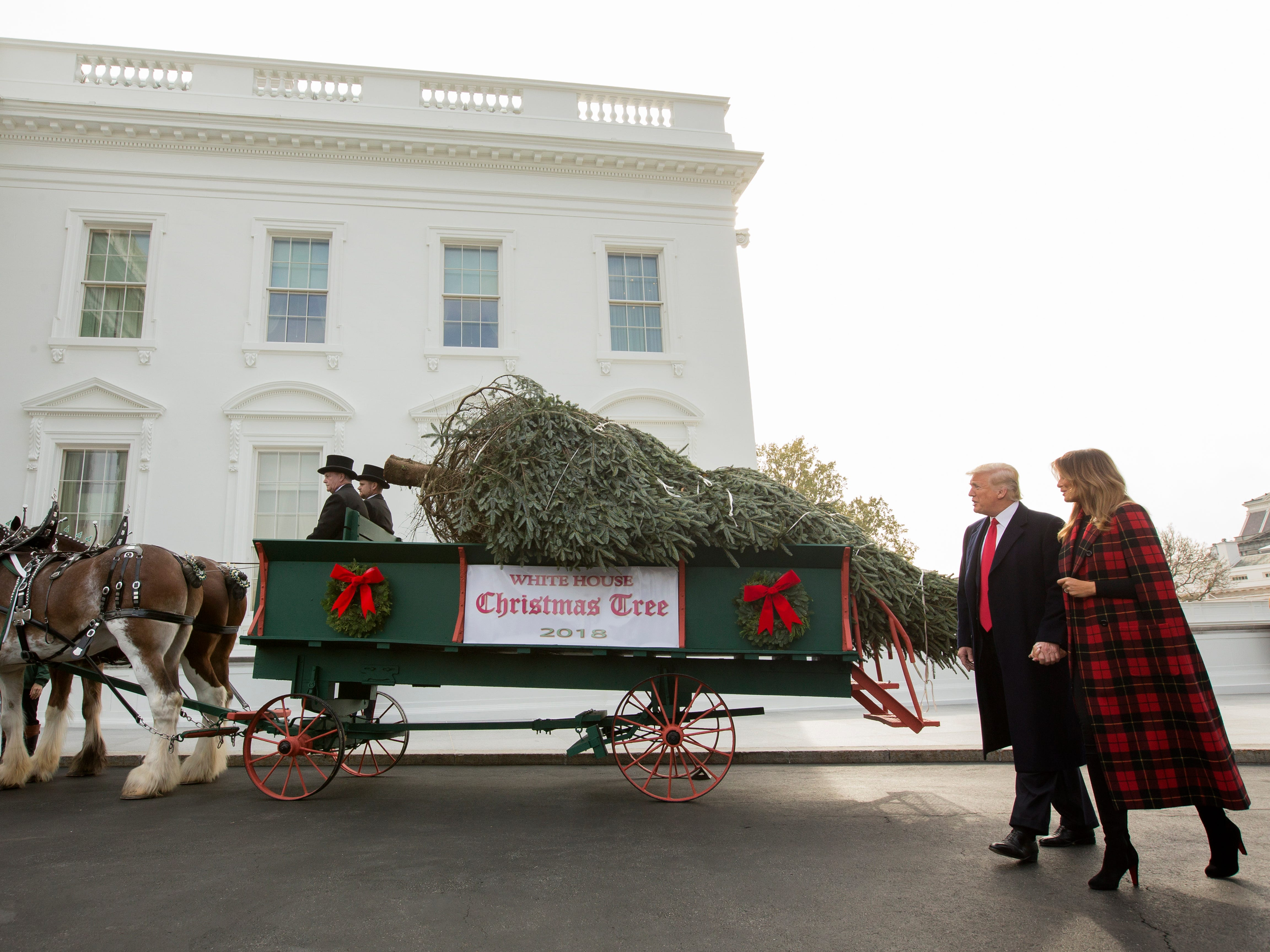 President Donald Trump and first lady Melania Trump participate in the presentation of the official White House Christmas Tree on Nov. 19, 2018.