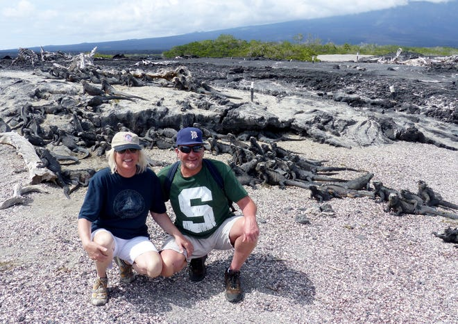 Lawrence Hurst photographed stepdaughter Katie Kiyo and son-in-law Dwight Diener of Bloomfield Hills when they took the D to Fernandina Island, part of the Galapagos Islands, in the spring of 2017. Visible behind them are marine iguanas, which were basking in the early-morning sun. Marine iguanas, the only seagoing lizards in the world, are found only in the Galapagos Islands. Fernandina Island is an active shield volcano that has been erupting since  2009.