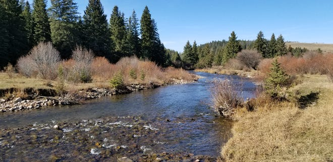 The Rocky Mountain Elk Foundation is pursuing a purchase of land in the Sheep Creek Drainage of Helena-Lewis and Clark National Forest north of White Sulphur Springs.