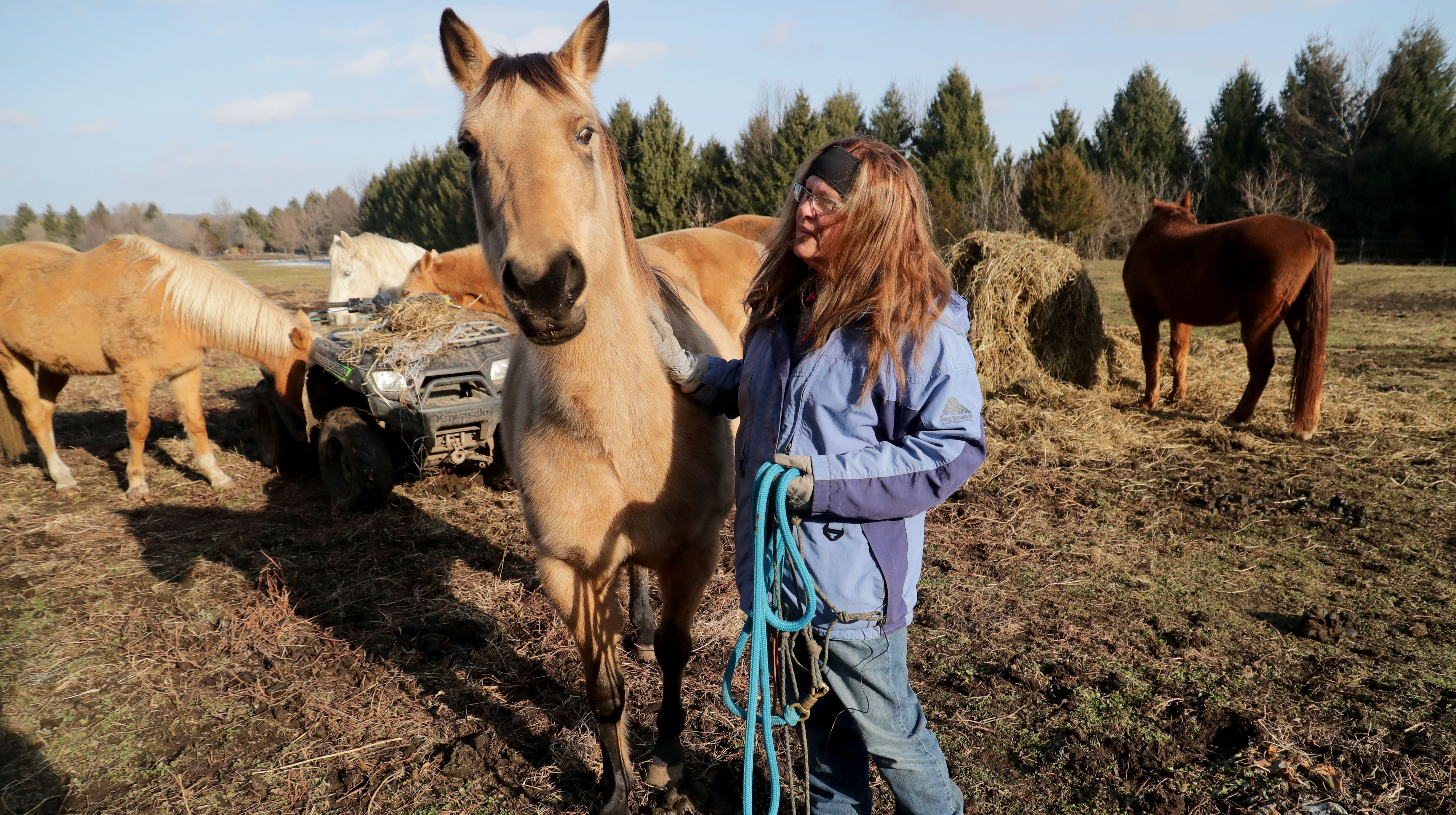 Dee Dee Golberg, owner of the Spirit Horse Equine...