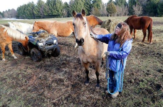 HORSES09p1