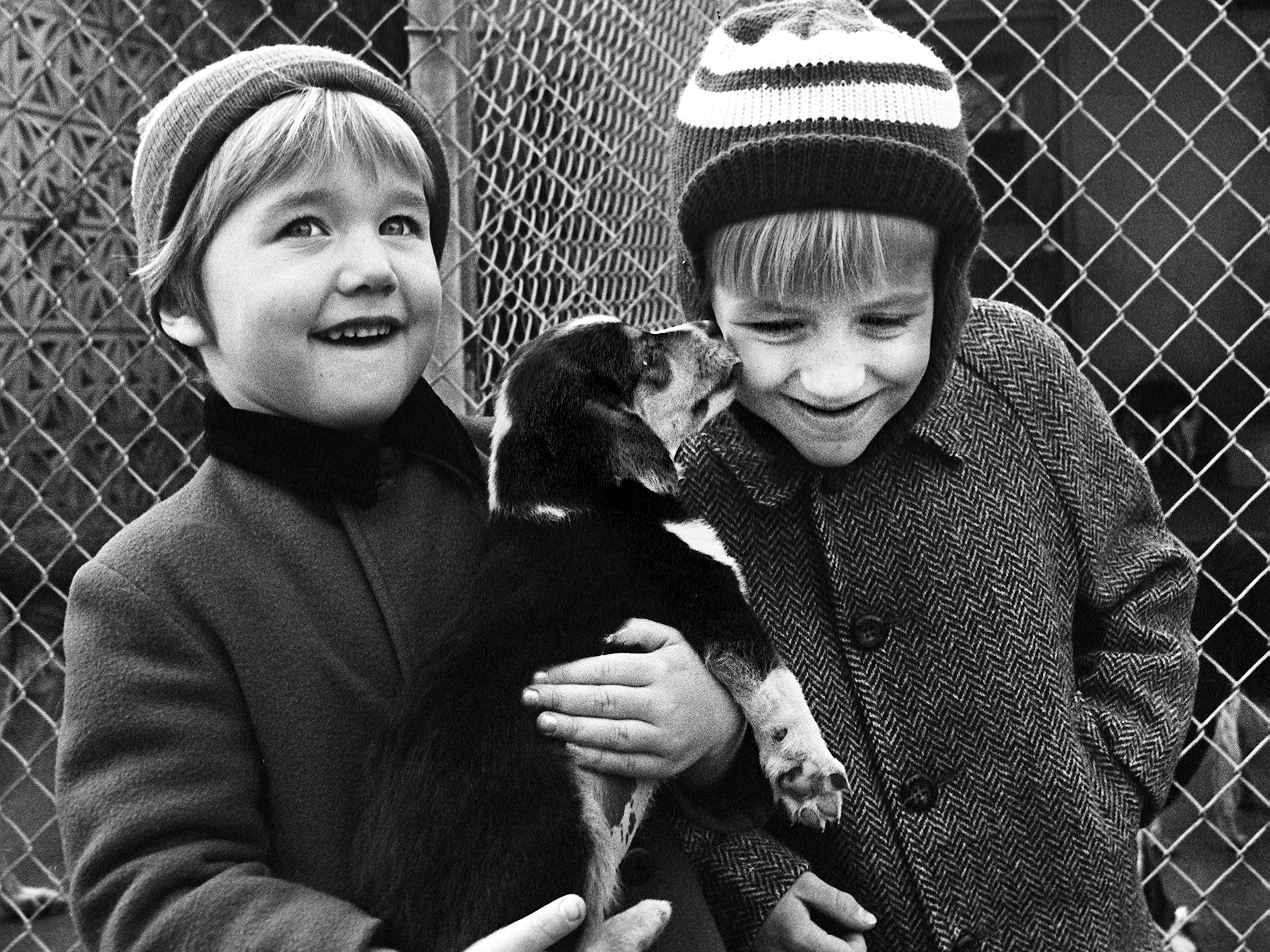 Elaine Kimbrough, left, 4, daughter of Mr. and Mrs. Miller Kimbrough Jr., and Robin Daugherty, 6, son of Mr. and Mrs. Robert Daughtery, do some last-minute Christmas shopping at the Nashville Humane Association's shelter Dec. 23, 1968. Humane officials report a large stock of puppies await the warm hands of friends for the holidays.