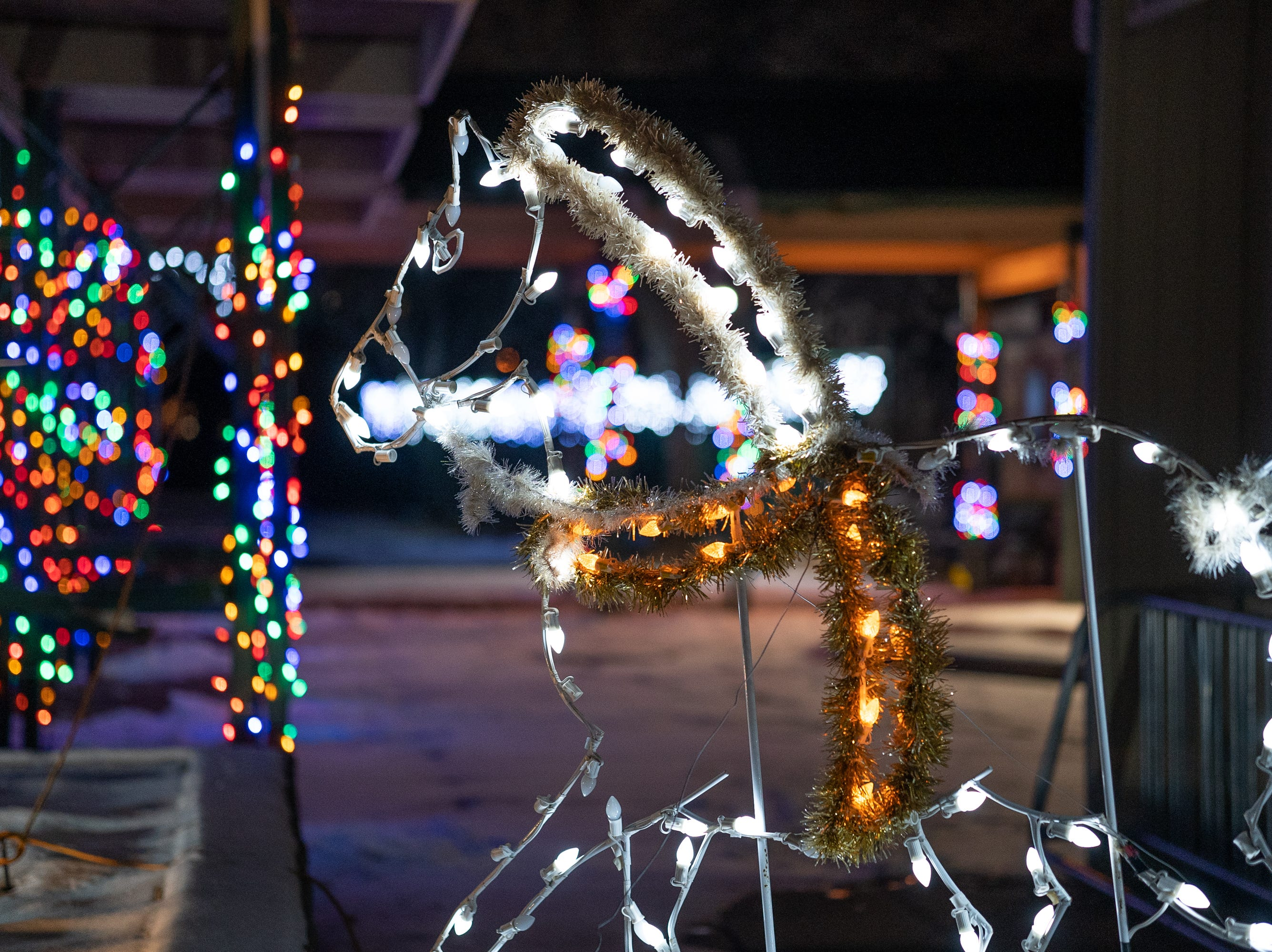 The 17th Annual Celebration of Lights is being held each night until Dec. 31 in Menominee Park in Oshkosh.