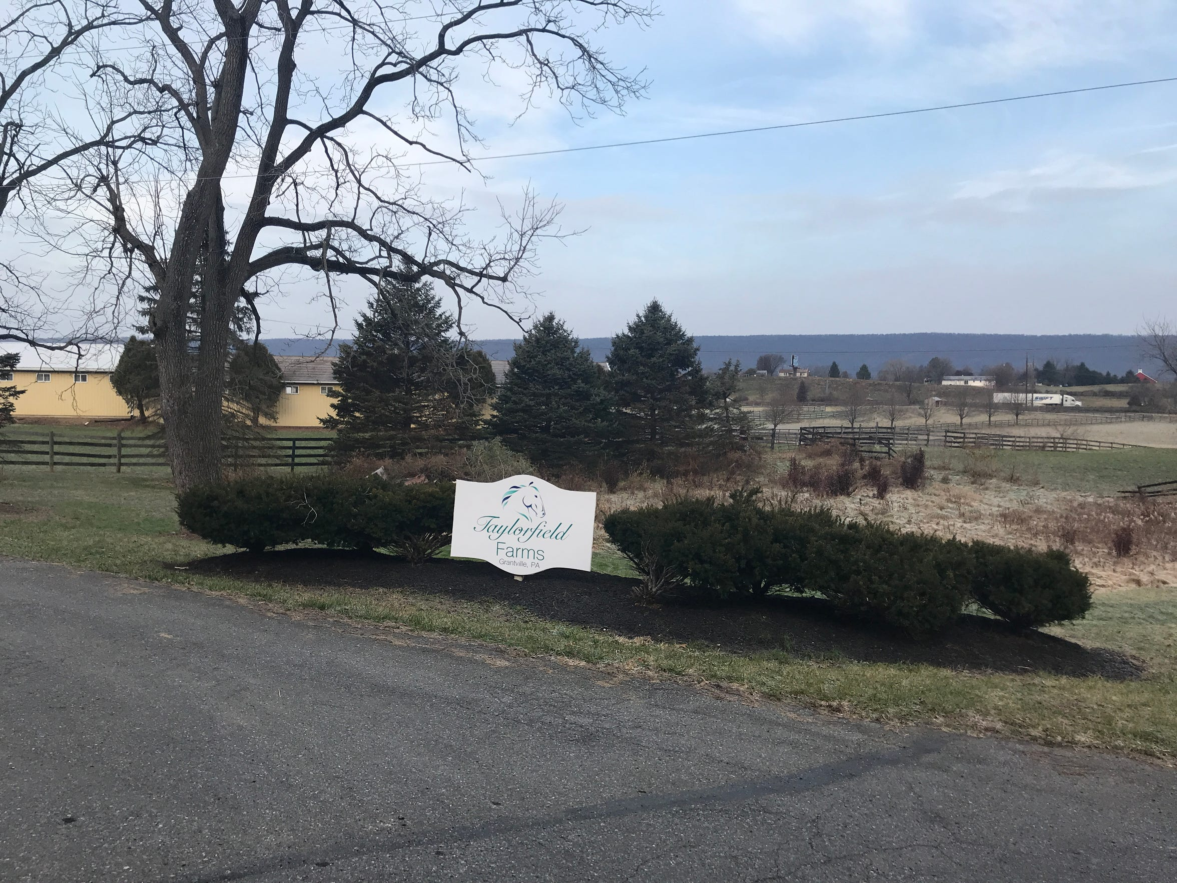 Taylorfield Farms, where a veterinarian claims Noria Mowrer improperly treated most of 16 horses in her care. The veterinarian was clear that Taylorfield Farms was not responsible for the abuse.
