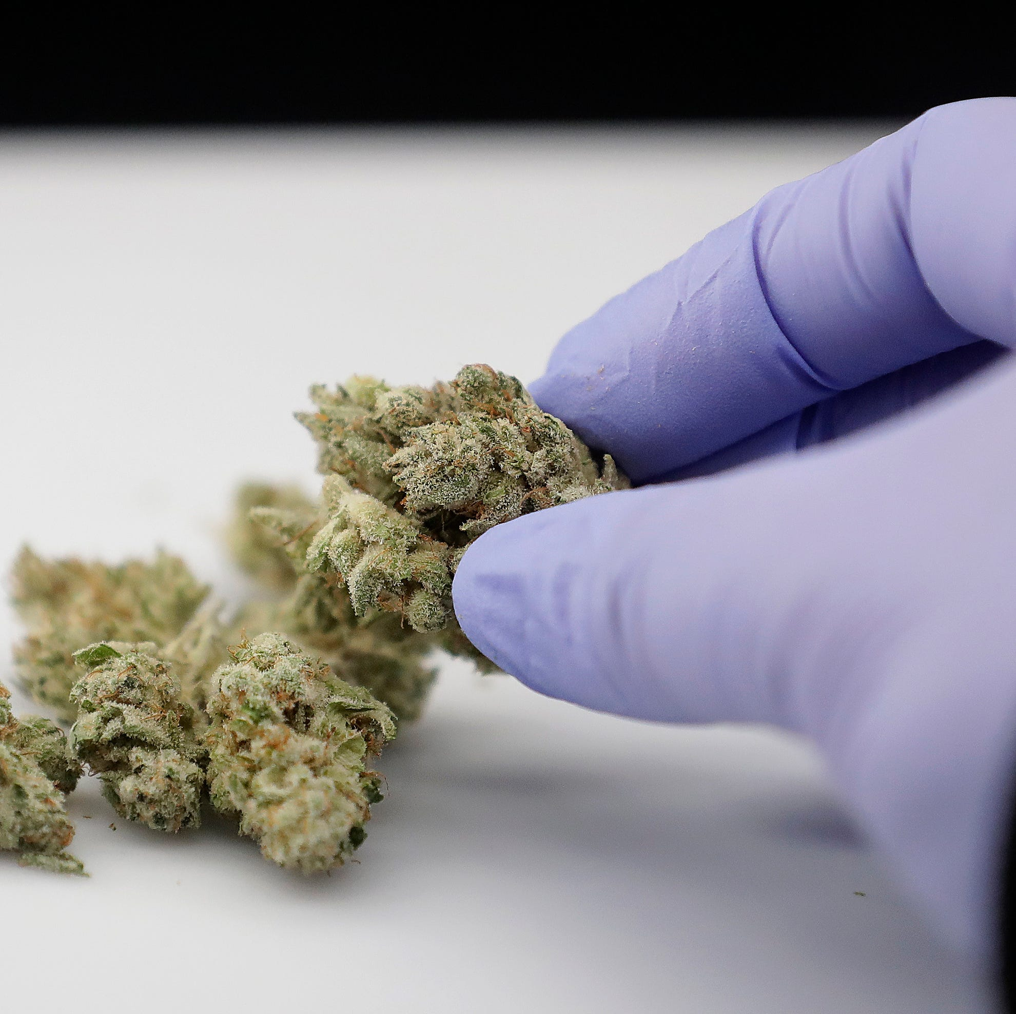 Utah's largest health provider changes policy on marijuana