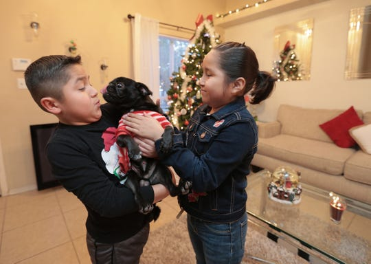 Marco Rosales dodges a kiss from the family's pug as he and Jacqueline Rosales play in their Horizon City home.