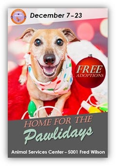 El Paso Animal Services is offering free adoptions of shelter pets from Dec. 7 to Dec. 23.