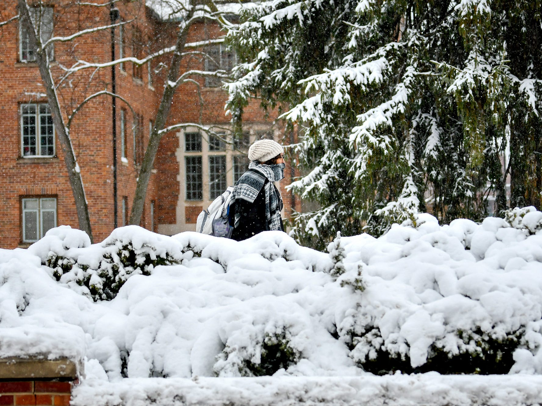 A pedestrian passes by snow-covered bushes outside Landon Hall on Nov. 26, 2018, on the Michigan State University campus in East Lansing, Mich.