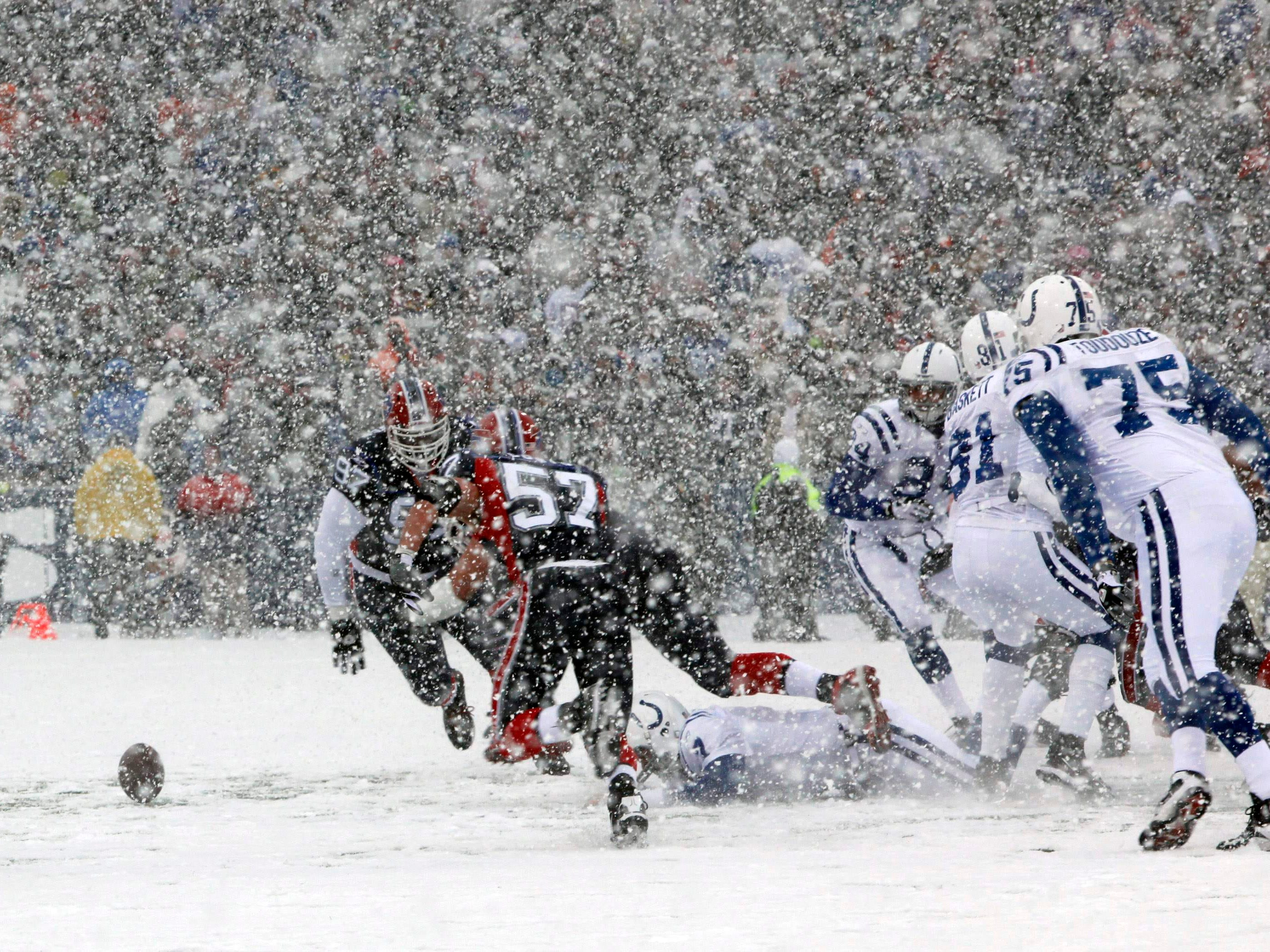 Jan. 3, 2010: The Buffalo Bills recover a fumble by Indianapolis Colts quarteback Curtis Painter during the first half in Orchard Park, N.Y. The Bills won the game, 30-7.