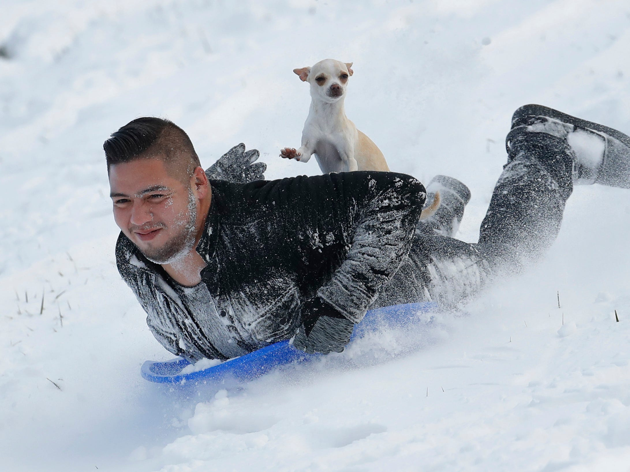Jonny Mendoza and his dog Subi sled down a snowy hill in a park on Nov. 26, 2018, in Kansas City, Kan.