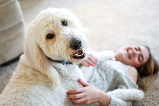 """Corrinne Gogolewski and her service dog, Rory, in their home in West Chester, Ohio. Rory detects Corrine's siezures and helps alert when Corrinne needs help. They were featured in Netflix's new series, """"Dogs."""""""