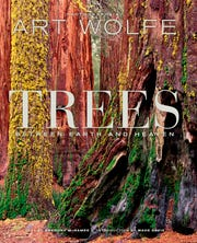 "This cover image released by  shows ""Trees: Between Earth and Heaven,"" by Gregory McNamee and photographs by Art Wolfe.  (Earth Aware Editions via AP)"