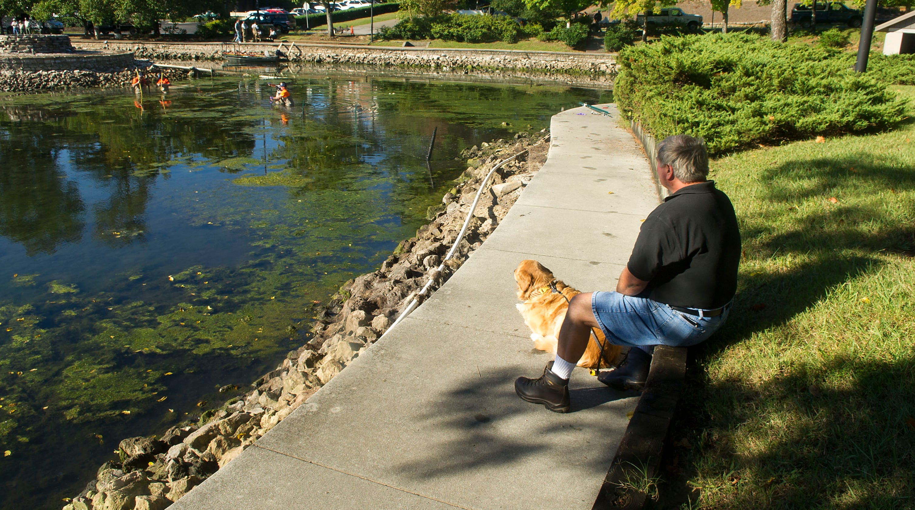 Blue-green algae: How it could harm Tennessee people and pets