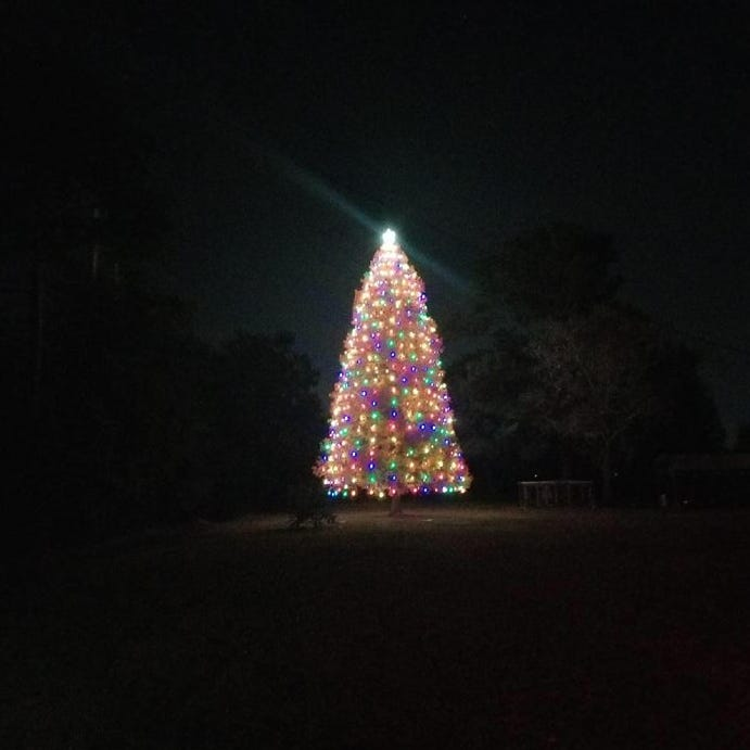 This man may have Louisiana's largest Christmas tree