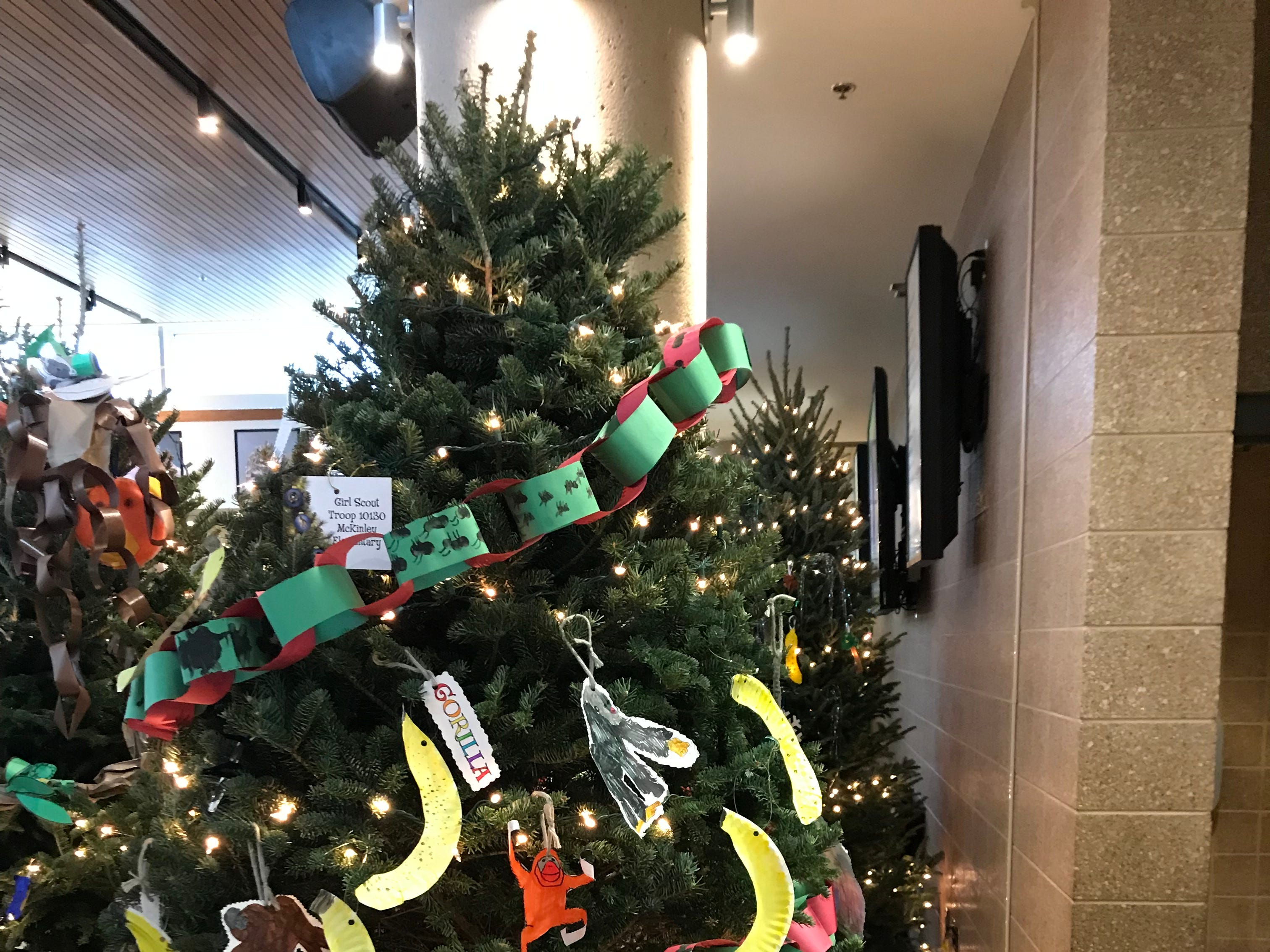 McKinley Girl Scouts decorated this tree in the primate area of the Zoological Society's Christmas tree display.