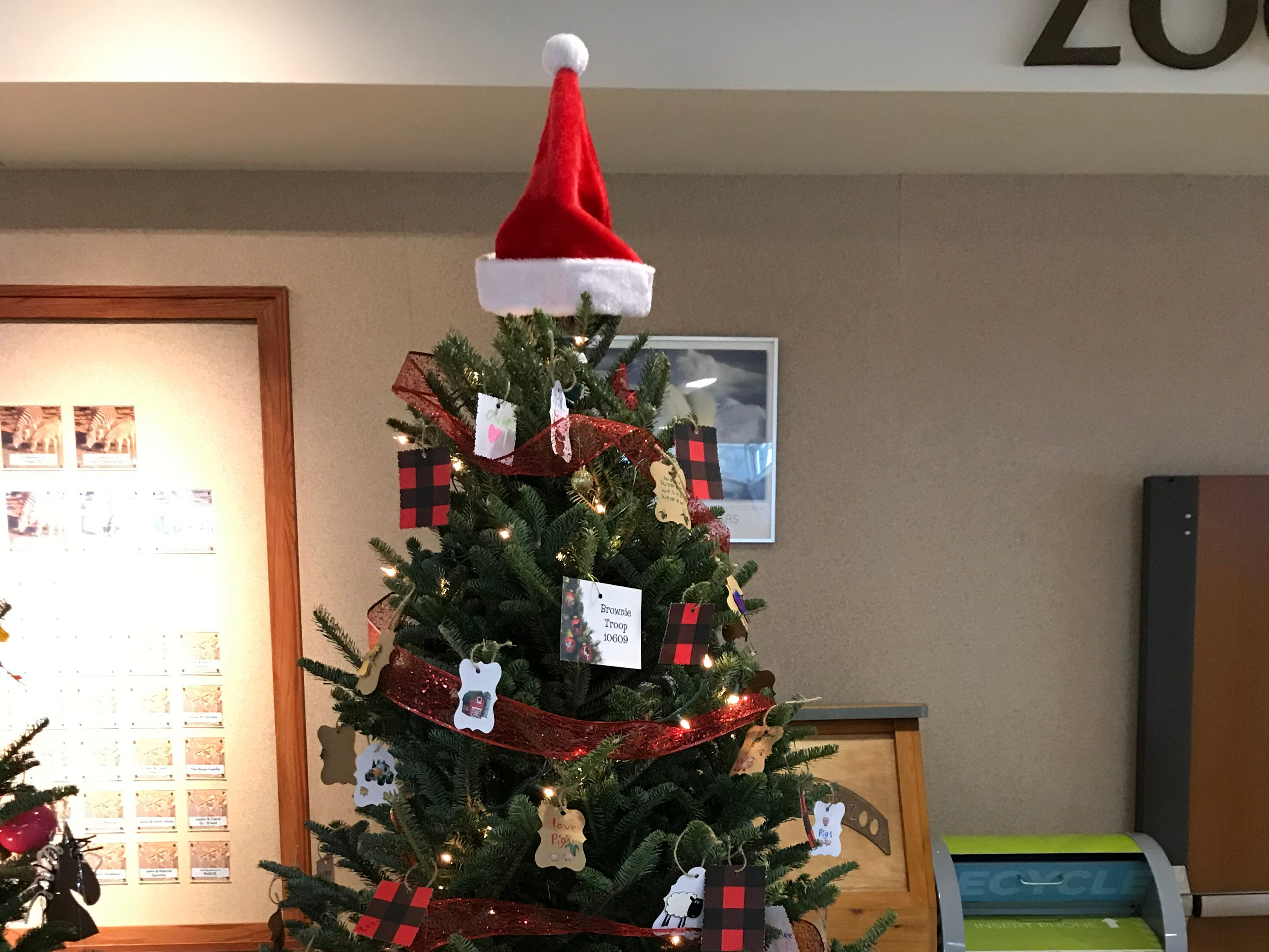 The Milwaukee Zoological Society invites kids every year to decorate Christmas trees at the zoo, like this one decorated by a Brownie troop.