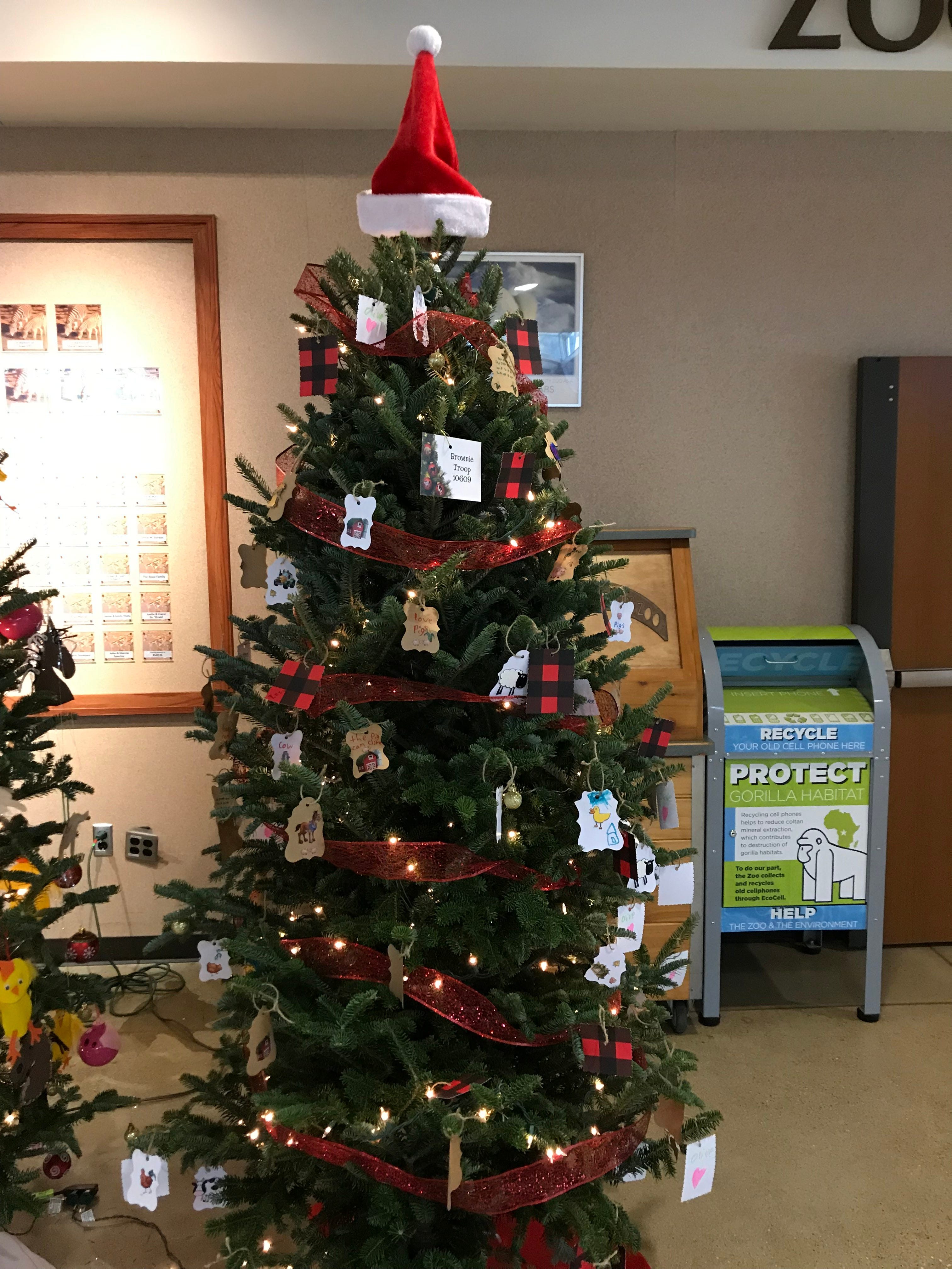 Christmas Trees Decorated By Kids In Milwaukee