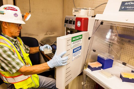 New Mexico State University biology professor Geoff Smith removes samples from an incubator underground at the Waste Isolation Pilot Plant, as part of the Low Background Radiation Experiment.