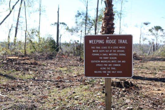 A portion of a nature trail has been cleared but debris still lines the path. Torreya State Park reopened on Friday, Dec. 7, 2018, almost two months after Hurricane Michael hit the panhandle.