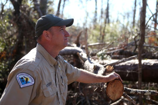 Jason Vickery, park manager at Torreya State Park stands in awe of the damage caused by Hurricane Michael. The state park reopened on Friday, Dec. 7, 2018, almost two months after Hurricane Michael hit the panhandle.