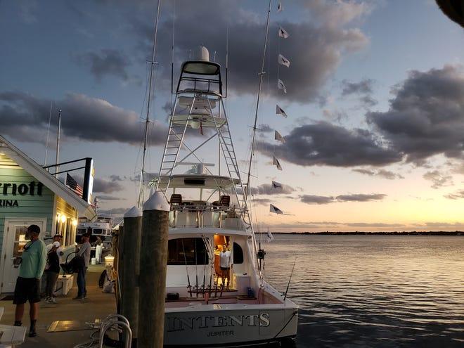Intents, led by Capt. Rhett Bailey, caught and released 11 sailfish Thursday, and added three more Friday, to lead the Light Tackle Sailfish Tournament fleet with 14 total sailfish. Fishing in the 65th annual event winds up Saturday.