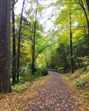 A carriage road at the Rockfeller State Park Preserve.