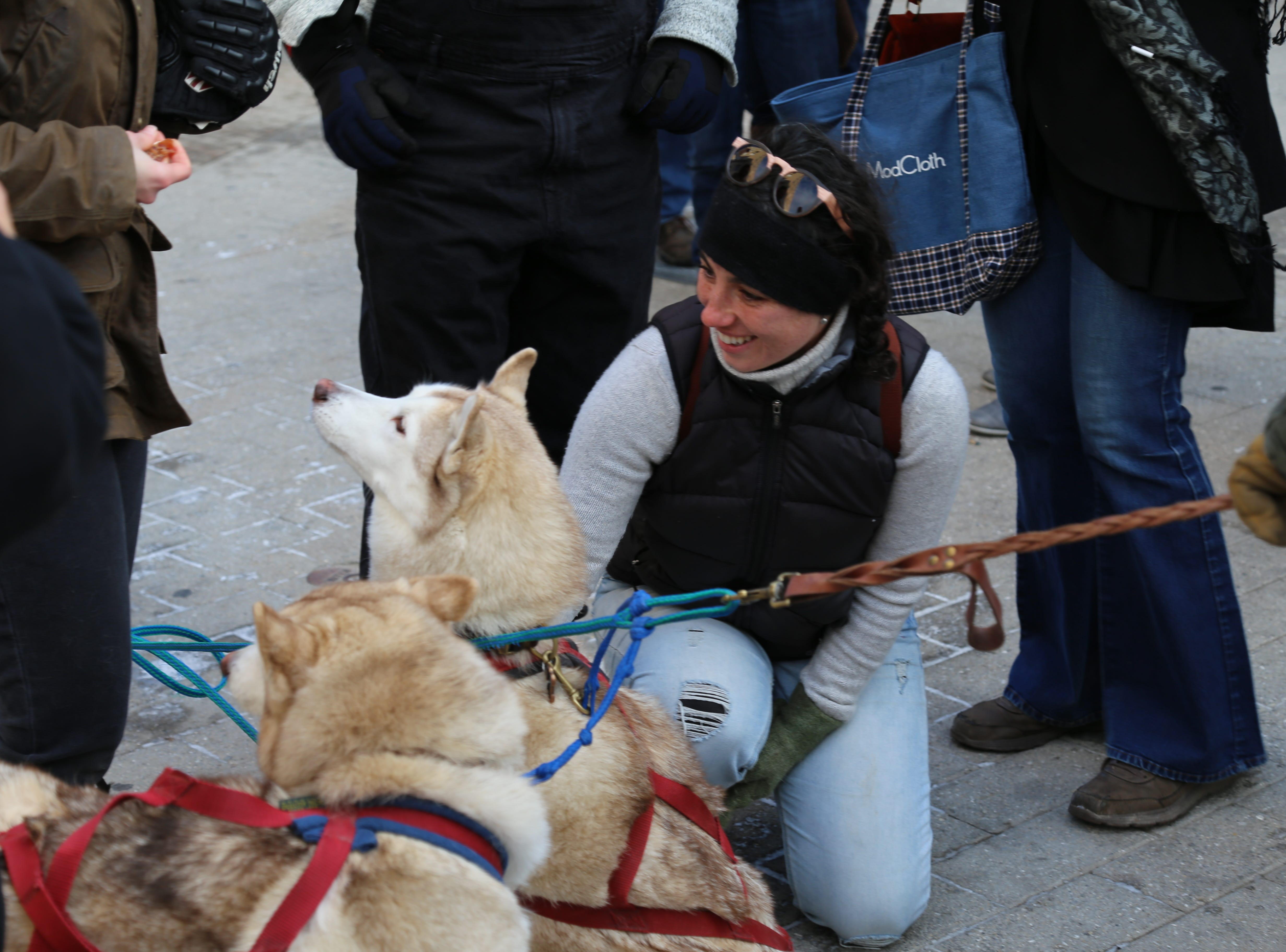 Residents and visitors petted Siberian huskies during the 2018 Ithaca Ice Fest.
