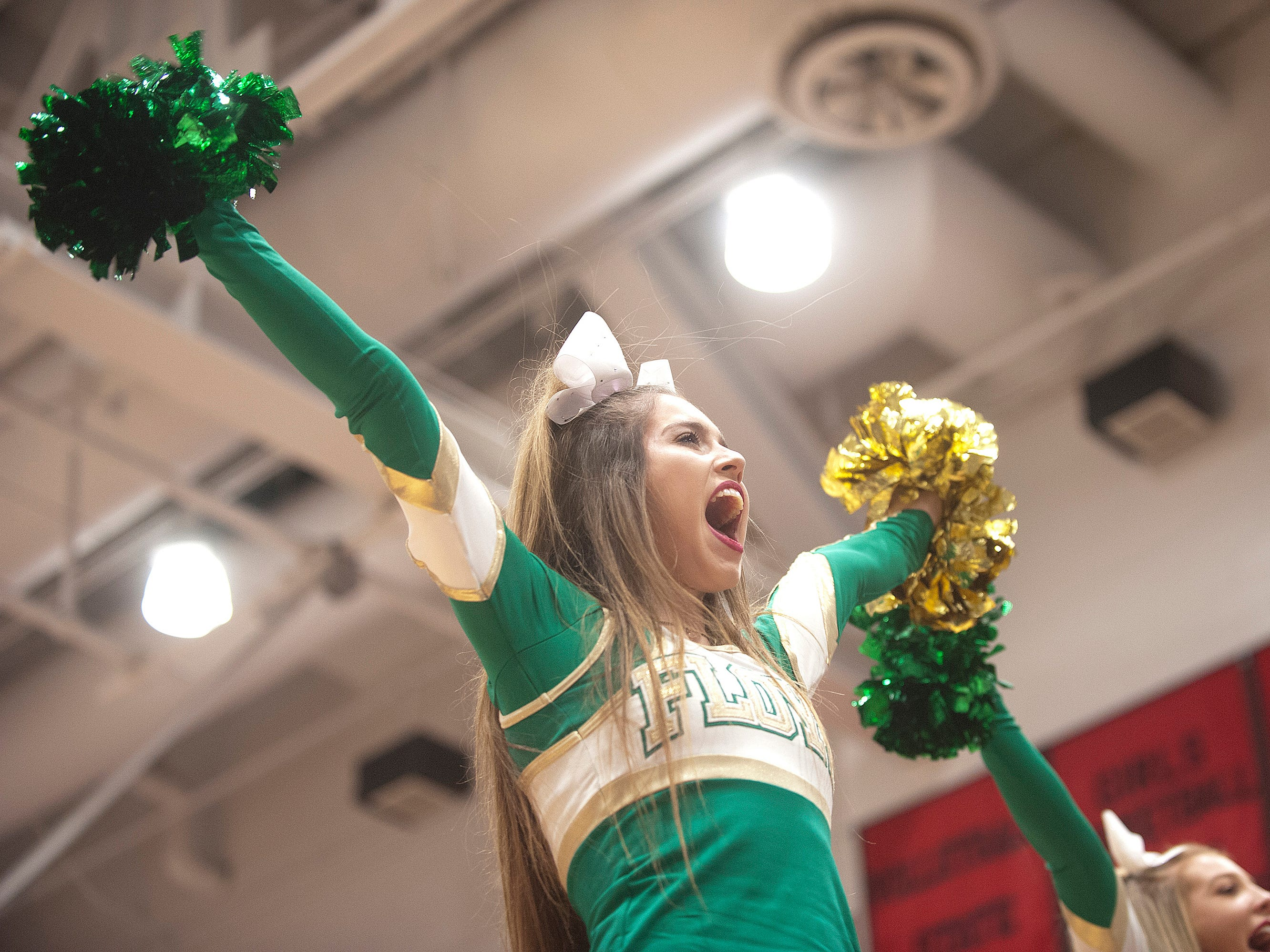 A Floyd Central cheerleader yells her cheer during a time-out.07 December 2018