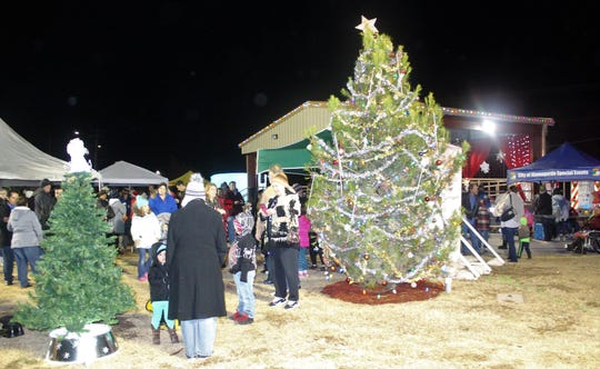 A tree recently planted in Washington Park will serve as the city's traditional Christmas tree for years to come.
