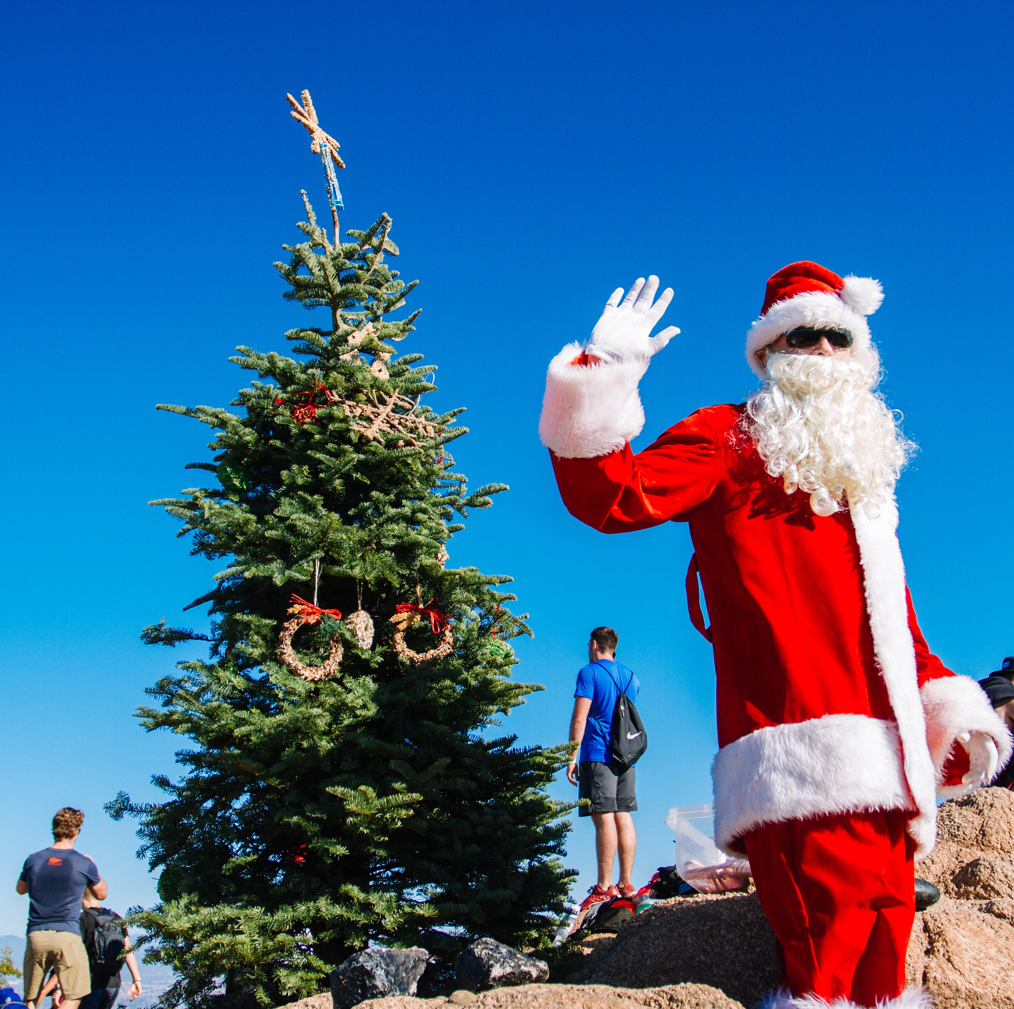 Camelback Mountain Christmas tree is back: Holiday cheer with a side of controversy