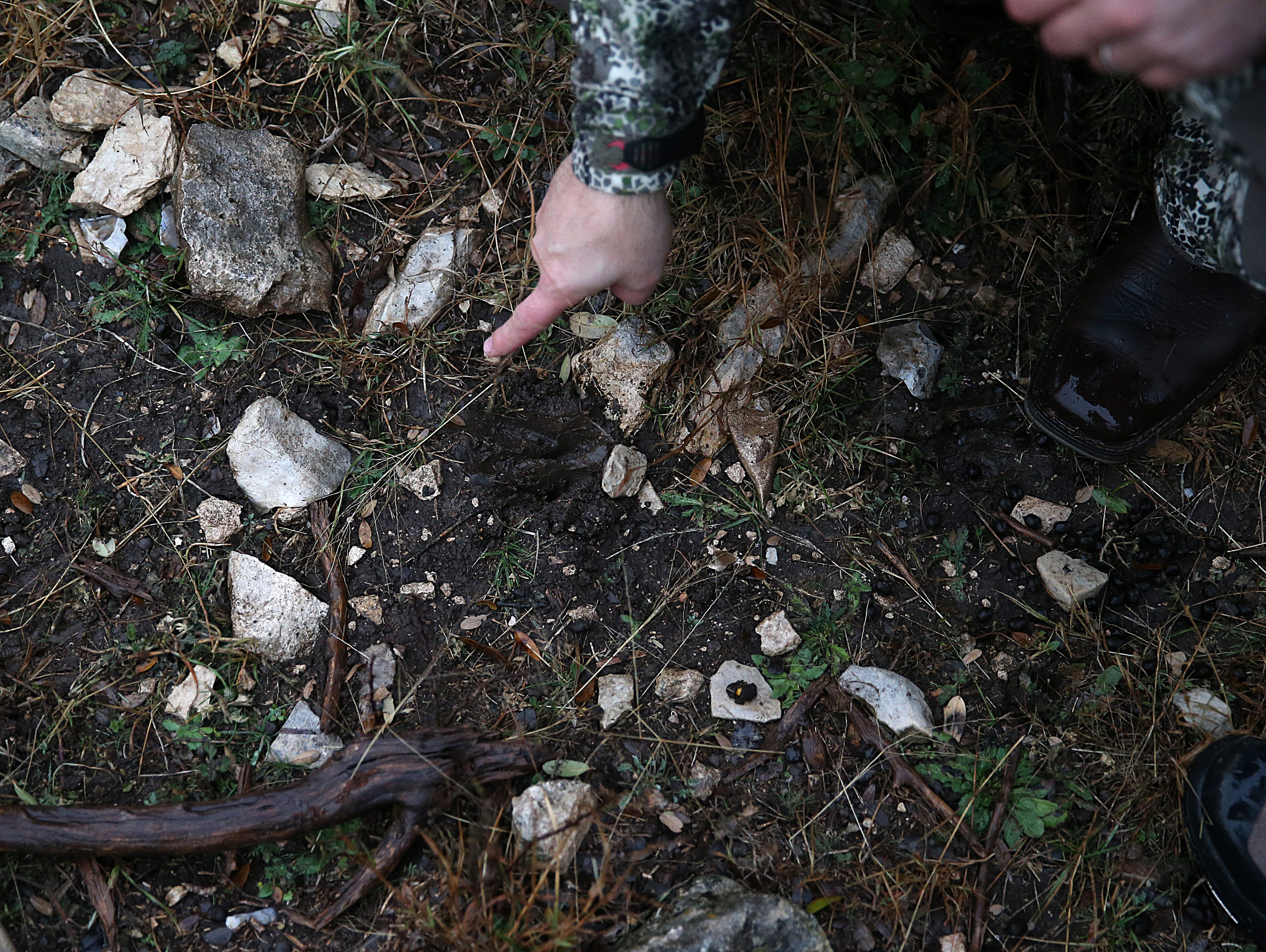 Deer hunters examine a deer print in the mud Friday, Dec. 7, 2018 during the annual deer hunt in Christoval sponsored by San Angelo Support for Veterans and Lone Star Warriors Outdoors.