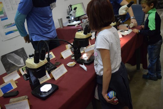 Samantha Rodriguez, 10, uses a microscope to investigate different rocks and fossils on Saturday during the Florida DEP's  Geological Survey open house.