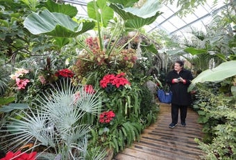 """Lasdon Park and Arboretum in Katonah is transformed for the """"Holidays on the Hill"""" train show experience."""