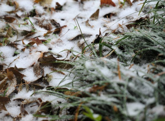 Some remaining green grass gets a light coating of snow Saturday morning.