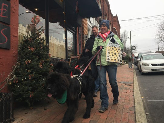 Matt and Suzanne Walker and their two Newfoundland dogs, Lionel and Henry, walk along Cherry Street on Dec. 8. The Walkers were in town for the Christmas Parade, which was postponed due to snow.