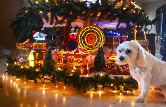 Nancy Campanaro spends days setting up her Christmas village tree adorned with Lemax, Mr. Chrismas and other brands of Christmas villages. Her dog Gucci manages to sneak into the photo shoot.