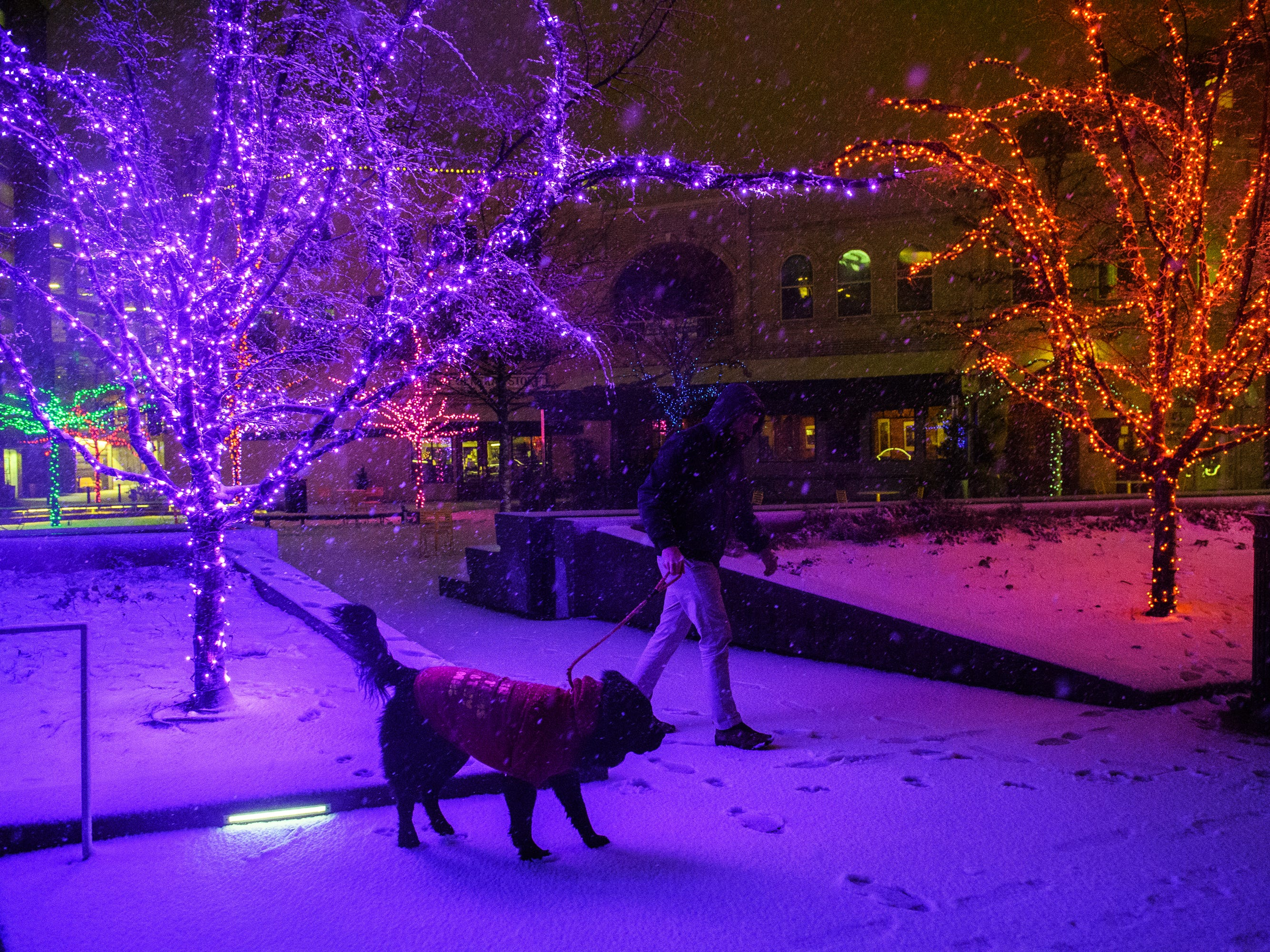 Alex Hunter walks his dog Monty in downtown Greenville as snow begins to fall on Sunday, Dec. 9, 2018.