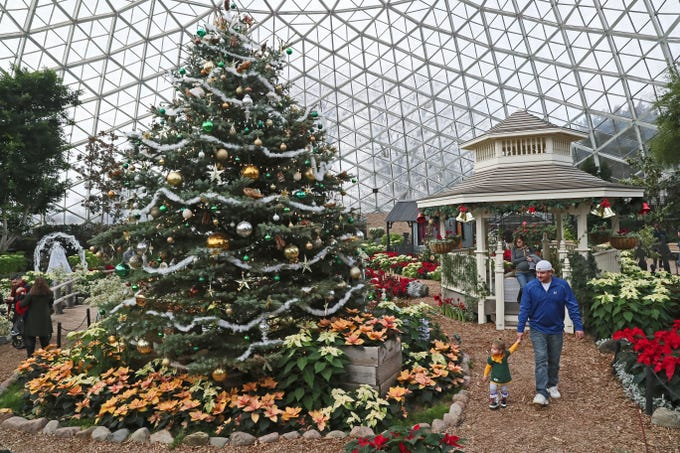 """Kyle Chick (right) of Rochester walks with his daughter Anna, 2, through a floral display followed by his wife Jenny Chick during the Mitchell Park Horticultural Conservatory's """"Scrooooge!"""" holiday floral show. The show runs through through Jan.6."""