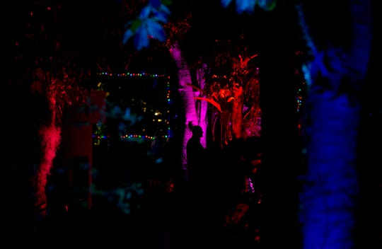 Visitors explore the Naples Botanical Garden during the Night Lights in the Garden event on Friday, Dec. 7, 2018.
