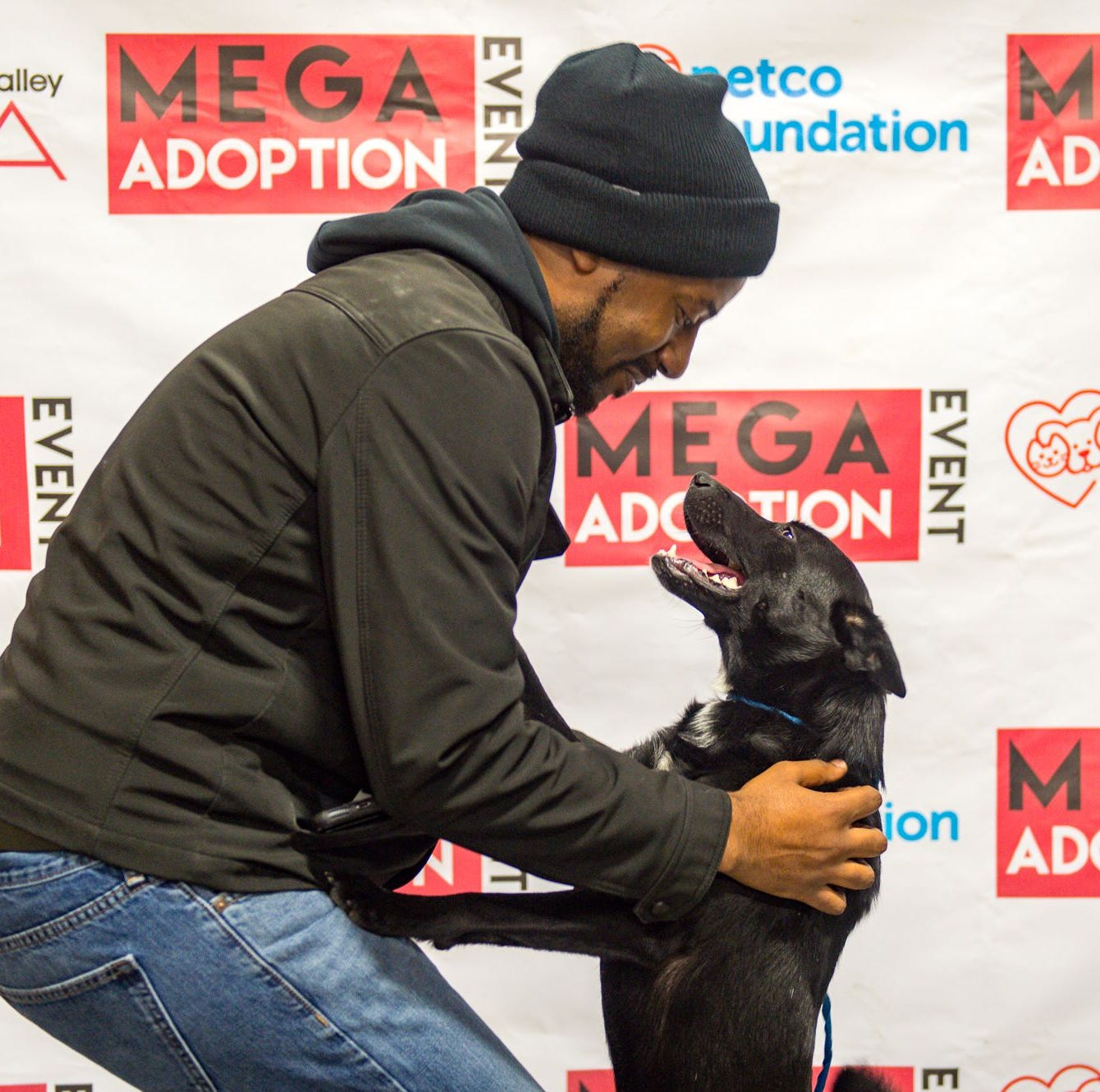 1,181 cats and dogs find homes during Brandywine Valley SPCA's Mega Adoption Event